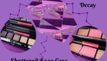 Urban Decay Shattered Face Case 2